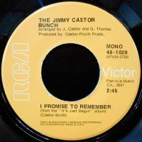 7 / THE JIMMY CASTOR BUNCH / I PROMISE TO REMEMBER / TROGLODYTE