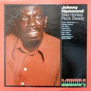 LP / JOHNNY HAMMOND / WILD HORSES ROCK STEADY
