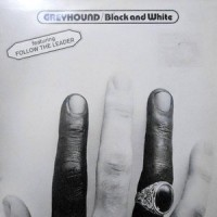 LP / GREYHOUND / BLACK AND WHITE
