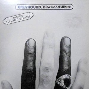 LP / GREYHOUND / BLACK AND WHITE
