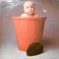 LP / BARCLAY JAMES HARVEST / BABY JAMES HARVEST