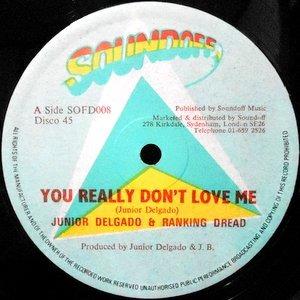 12 / JUNIOR DELGADO & RANKING DREAD / YOU REALLY DON'T LOVE ME