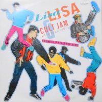 12 / LISA LISA & CULT JAM WITH FULL FORCE / I WONDER IF I TAKE YOU HOME