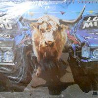 LP / JOHNNY HAMMOND / FOREVER TAURUS