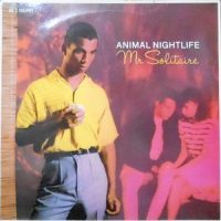 12 / ANIMAL NIGHTLIFE / MR SOLITAIRE
