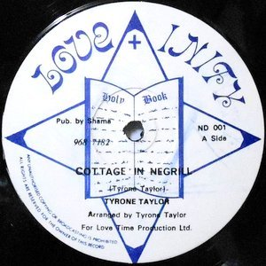 12 / TYRONE TAYLOR / COTTAGE IN NEGRIL / DON'T DESTROY ME