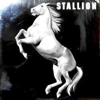 LP / STALLION / STALLION