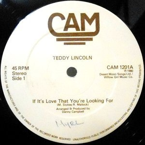 12 / TEDDY LINCOLN / IF IT'S LOVE THAT YOU'R LOOKING FOR