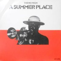12 / TAN TAN / THEME FROM A SUMMER PLACE