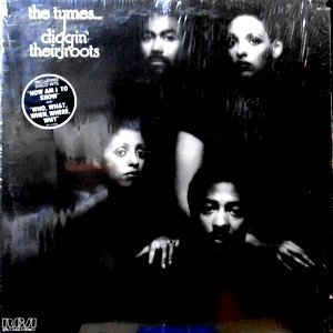LP / THE TYMES / DIGGIN' THEIR ROOTS