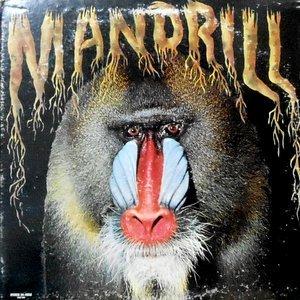 LP / MANDRILL / MANDRILL