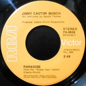 7 / JIMMY CASTOR BUNCH / PARADISE / THE FIRST TIME EVER I SAW YOUR FACE