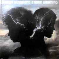 LP / JOHNNY HAMMOND / STORM WARNING