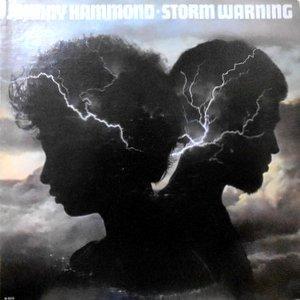 LP / JOHNNY HAMMOND / STORM WARNING