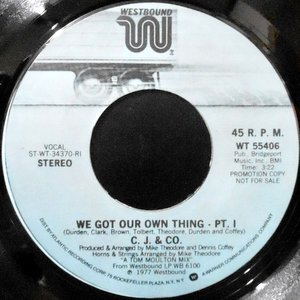 7 / C.J. & CO. / WE GOT OUR OWN THING - PT.1