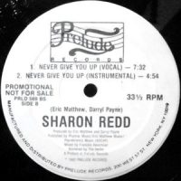 12 / SHARON REDD / NEVER GIVE YOU UP / (INSTRUMENTAL)