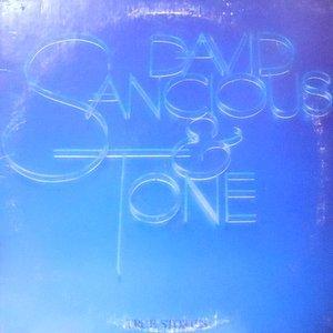 LP / DAVID SANCIOUS & TONE / TRUE STORIES