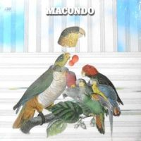 LP / MACONDO / MACONDO