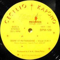12 / CECILIO & KAPONO / DOIN' IT IN PARADISE / (INSTRUMENTAL)