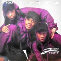 12 / 2 TOO MANY / MY IMAGINATION