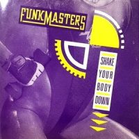 12 / FUNK MASTERS / SHAKE YOUR BODY DOWN / RAP YOUR BODY DOWN