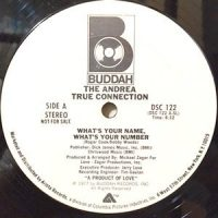 12 / ANDREA TRUE CONNECTION / WHAT'S YOUR NAME, WHAT'S YOUR NUMBER