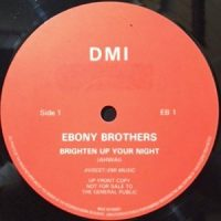 12 / EBONY BROTHERS / BRIGHTEN UP YOUR NIGHT / (DUBSTITUTE VERSION)