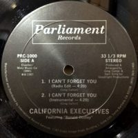 12 / CALIFORNIA EXECUTIVES / I CAN'T FORGET YOU