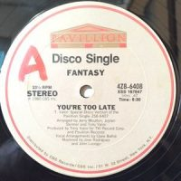 12 / FANTASY / YOU'RE TOO LATE / (INSTRUMENTAL)