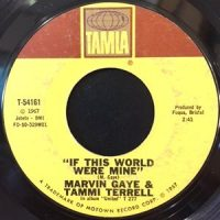 7 / MARVIN GAYE & TAMMI TERRELL / IF THIS WORLD WERE MINE